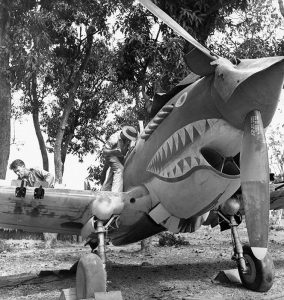 The 'Flying Tigers'